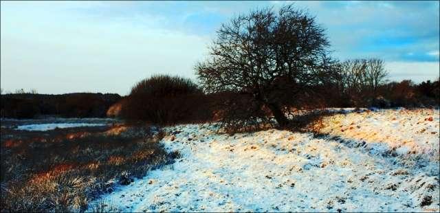 snijeg-u-hovborgu-5.jpg