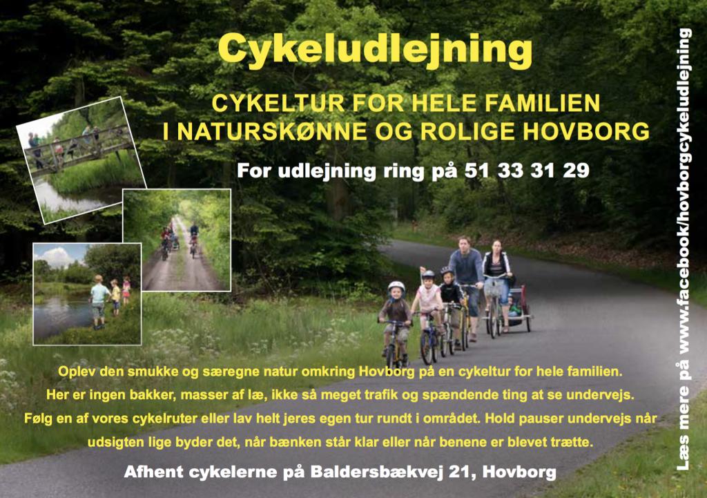 Cykeludlejning dansk
